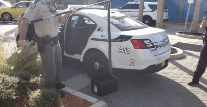A Florida man who claimed to be God's agent was caught carrying a rattlesnake.