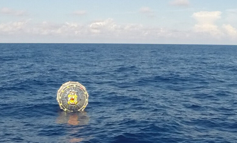 A Florida man was arrested for trying to drive a hamster ball into the Bahamas