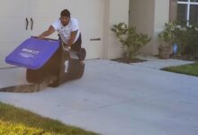 Admired for bravery, a Florida man uses a trash can to catch an alligator roaming the neighborhood